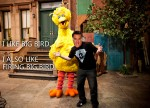 mitt-romney-big-bird-internet-meme